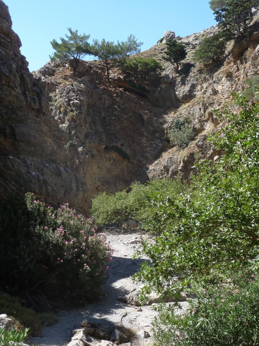 Rouvas gorge 3