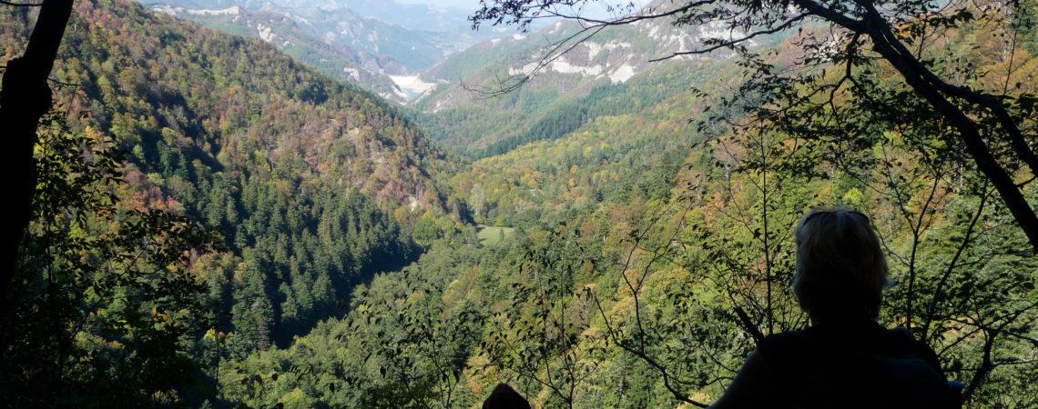 Foresta della Lama in autunno
