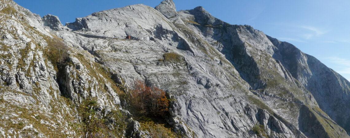 Cave Cruze e Tambura